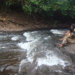 Ecological tour to Kakkayam, Janakikkadu 12