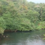 Ecological tour to Kakkayam, Janakikkadu 15