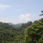 Ecological tour to Kakkayam, Janakikkadu 5