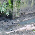 Public Interest Litigation Case – Nadakkavu Colony December 3, 2012  (5)